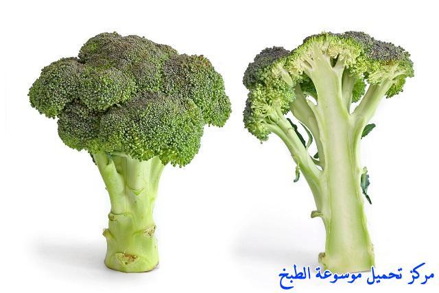 http://www.encyclopediacooking.com/upload_recipes_online/uploads/images_broccoli-recipe-soup-%D8%B4%D9%88%D8%B1%D8%A8%D8%A9-%D8%A7%D9%84%D8%A8%D8%B1%D9%88%D9%83%D9%84%D9%8A-%D8%A8%D8%A7%D9%84%D9%83%D8%B1%D9%8A%D9%85%D8%A9-%D9%84%D8%B0%D9%8A%D8%B0%D8%A9-%D9%88%D8%B3%D9%87%D9%84%D8%A9-%D8%A8%D8%A7%D9%84%D8%B5%D9%88%D8%B18.jpg