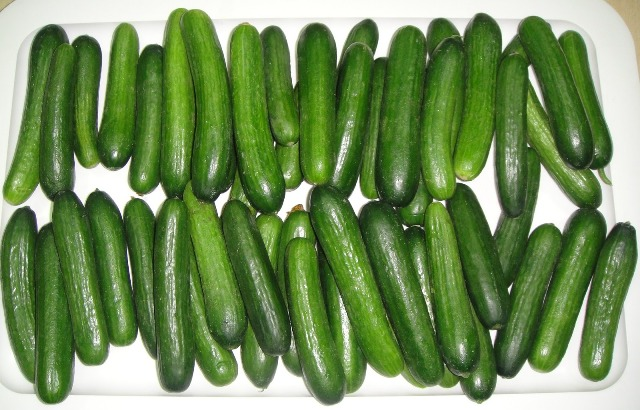 http://www.encyclopediacooking.com/upload_recipes_online/uploads/images_how-to-make-easy-homemade-licucumber-dill-pickles-recipe-step-by-step2.jpg