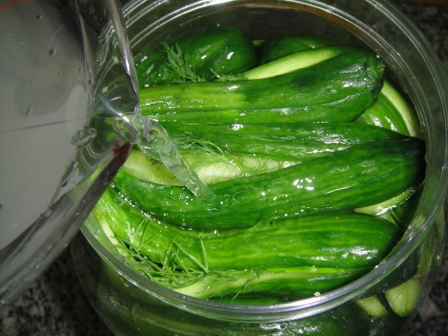 http://www.encyclopediacooking.com/upload_recipes_online/uploads/images_how-to-make-easy-homemade-licucumber-dill-pickles-recipe-step-by-step7.jpg