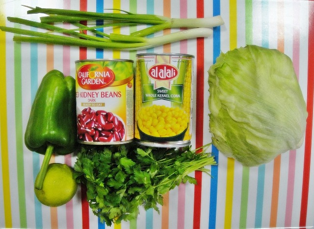 http://www.encyclopediacooking.com/upload_recipes_online/uploads/images_how-to-make-easy-mexican-green-salad-recipe-step-by-step2.jpg